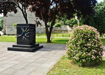 Uczczenie pamięci sportowców przy Pomniku Olimpijczyków