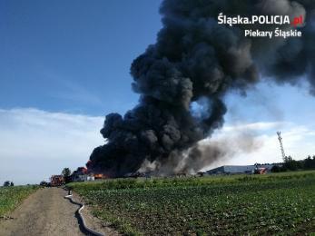 Policjanci ustalają przyczynę pożaru