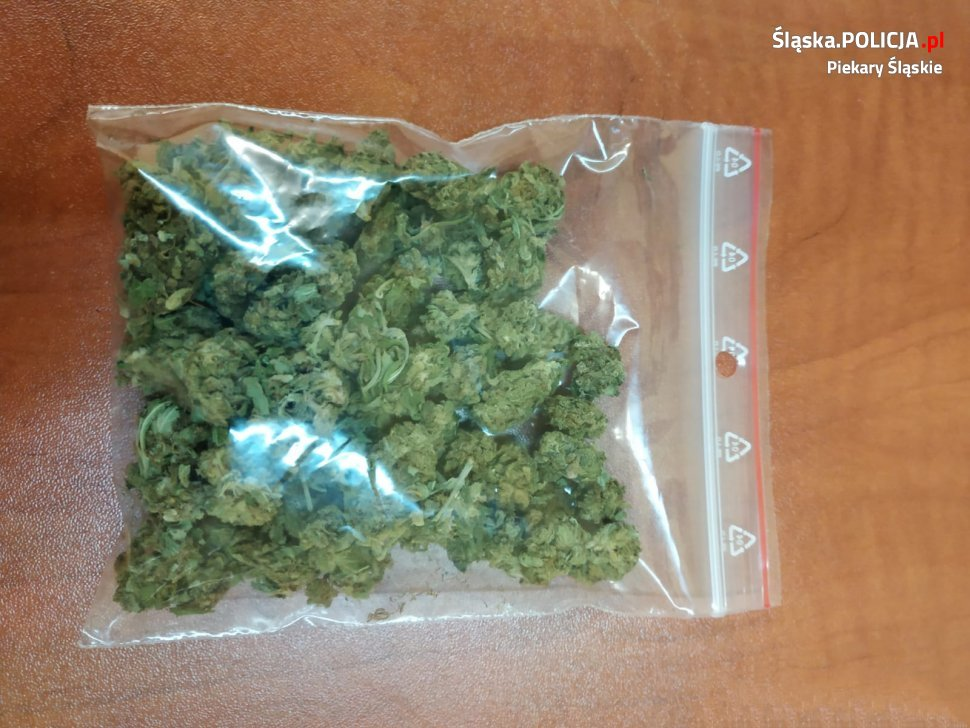 Mieszkaniec Piekar Śląskich zatrzymany z marihuaną